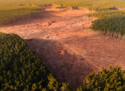 Technology Being Used to Combat Freshwater Shortages, Deforestation
