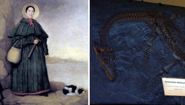 The Woman Who Discovered the Jurassic Coast - Mary Anning