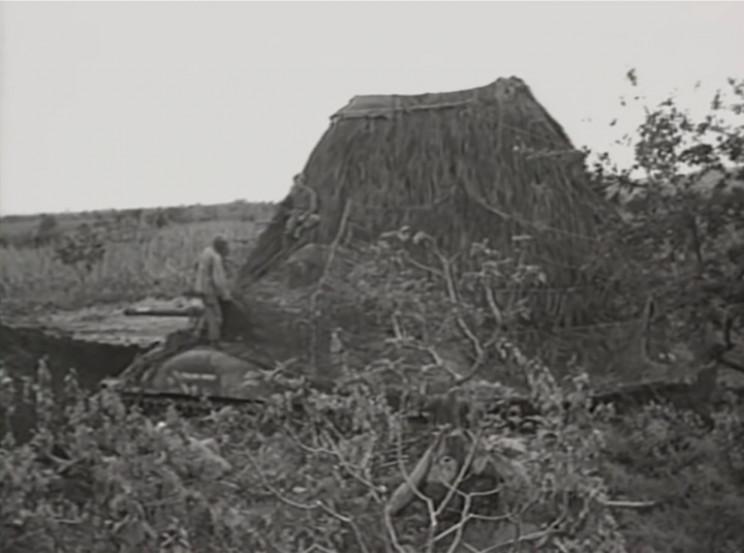 Anti-aircraft guns within false haystack