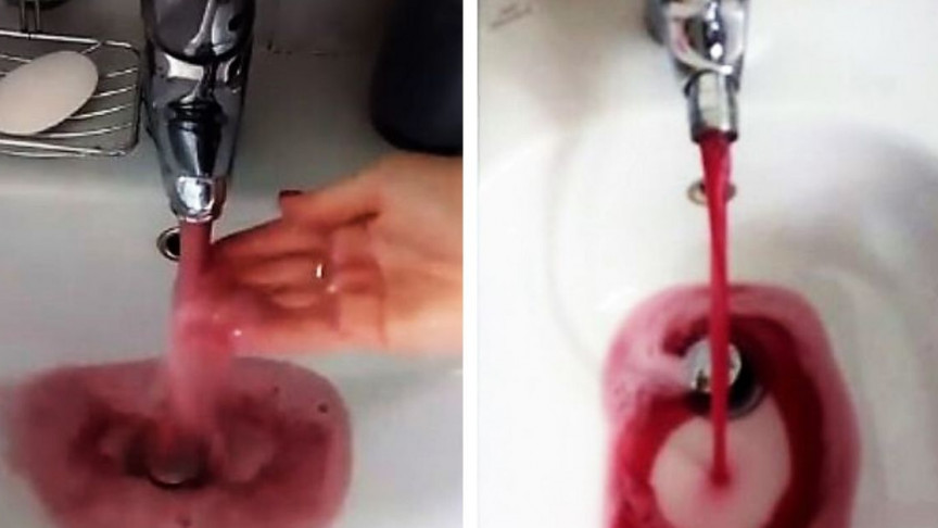 Image result for wine flowing from tap in italy