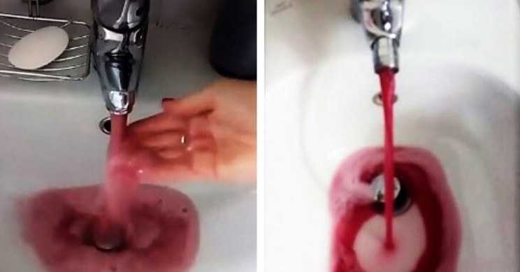 Delightful Malfunction Makes Wine Flow out of Taps in Northern Italian Town