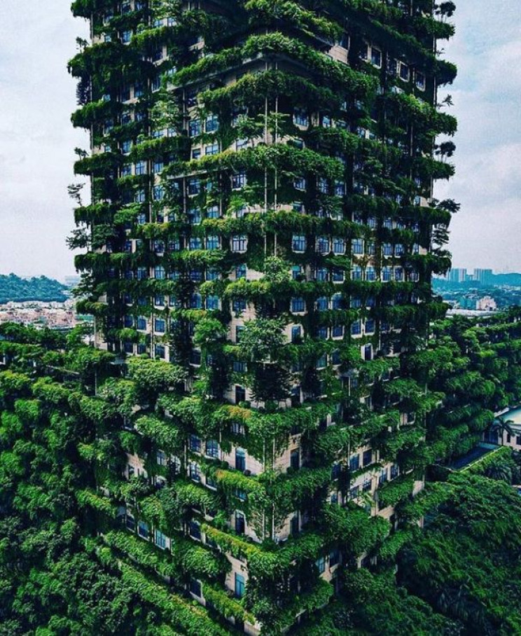 vertical forests 1