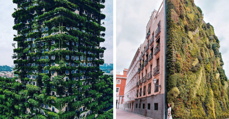 9 Vertical Forests Around the World That Look like Jungles in the City