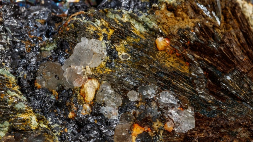 Microbes Used to Breathe Arsenic Before Oxygen Arrived on Earth - Interesting Engineering