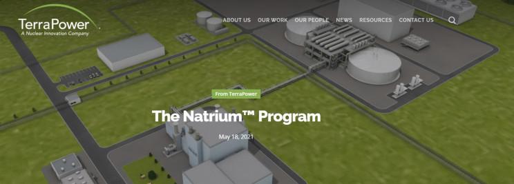 molten salt reactor natrium