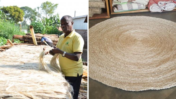 Uganda Startup Makes Carpets, Hair Extensions Out of Banana Waste