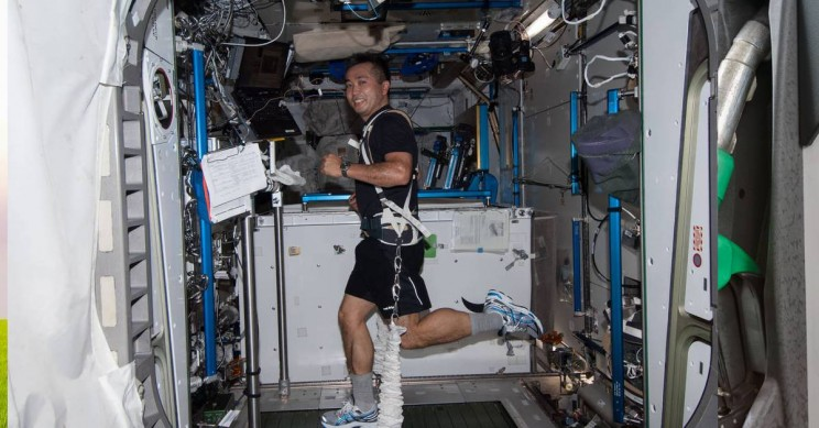 New Research Reveals How to Combat Muscle Loss During Space Flights