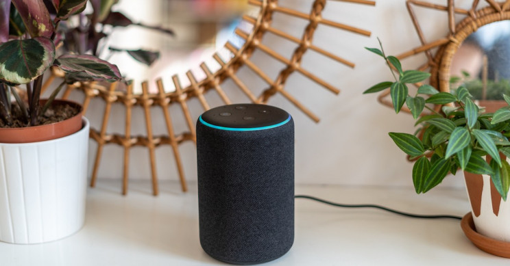 Teenage Latina Coder Created an Alexa Immigration Questions Skill to Help Friends and Family