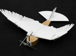 Researchers Develop a Drone That Can Bend Its Wings Similar To Birds