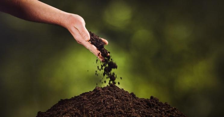acid rain and soil