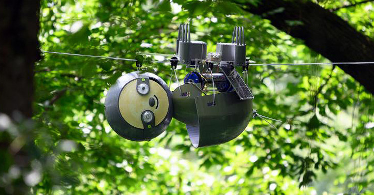 Robot Sloth Could Very Slowly Help Save World's Endangered Ecosystems