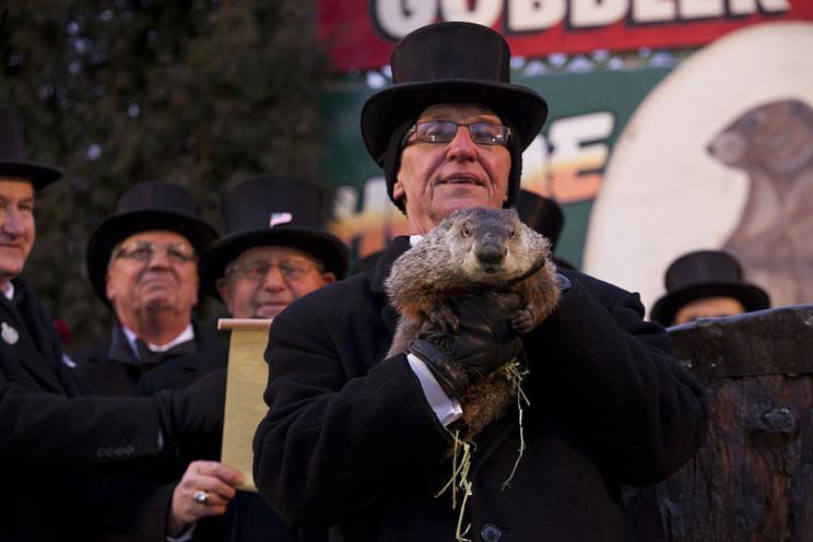 PETA Suggests Replacing Punxsutawney Phil with a Robot Groundhog