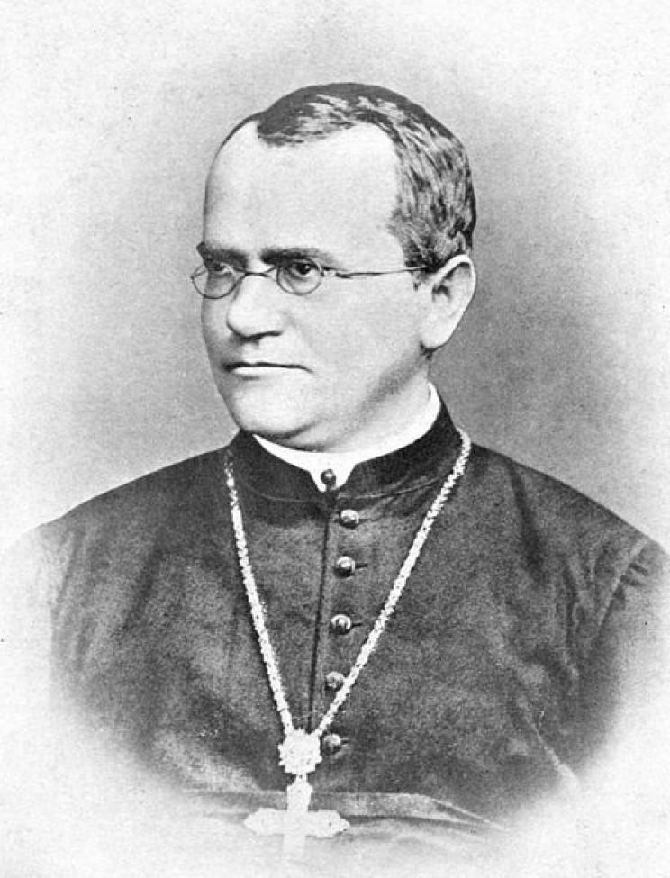 Gregor Mendel's Laws of Inheritance Changed our Understanding of Genetics