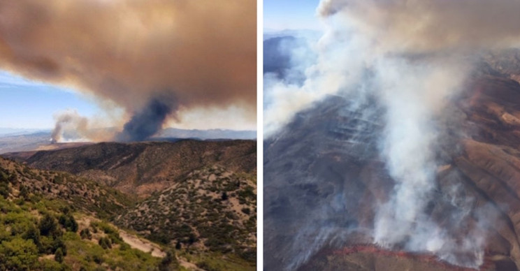 Two Firefighting Pilots Dead After Midair Collision During Nevada Fire