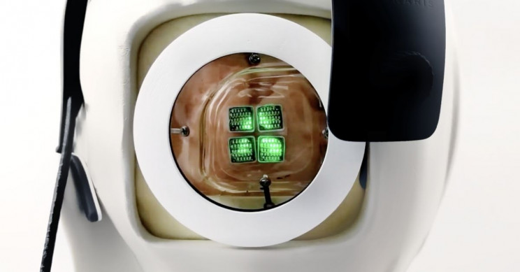 World's First Cortical Vision System Ready for Human Trials