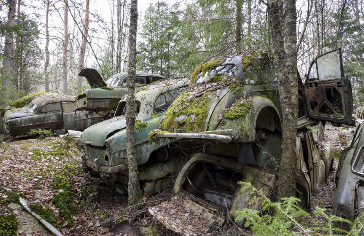 Photographer Documents Sweden's Abandoned Car Cemetery