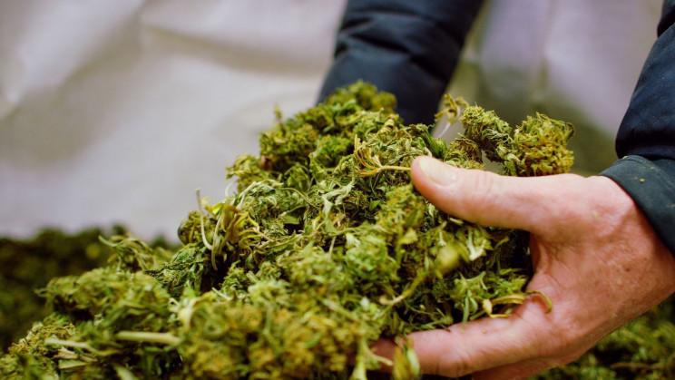 New York State Passes Bill To Legalize Recreational Marijuana