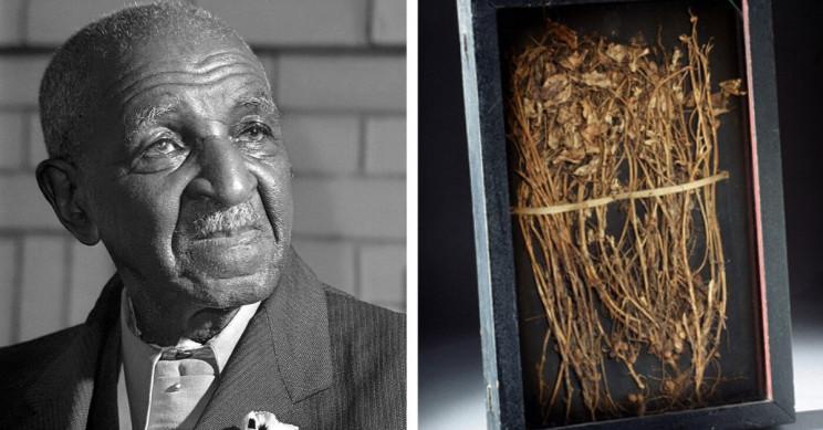 Dr. George Washington Carver: Inventor Extraordinaire