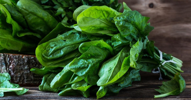 Spinach Powers Up Fuel Cells with More Efficiency
