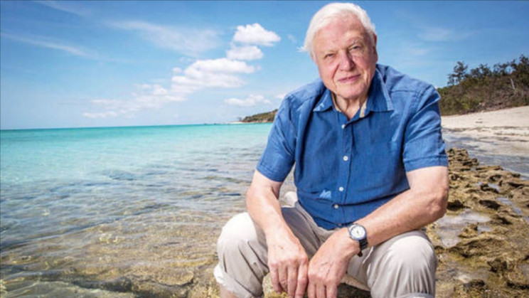 David Attenborough's 5 Lessons For Every Human