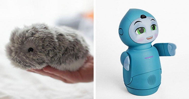 11+ of the Strangest Technologies Presented at CES 2021