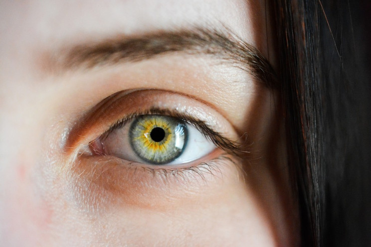 Bionic Cornea Are a New Horizon in Curing Blindness