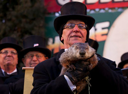 Old Habit of Predicting Early Spring through a Ground Hog Should Be Replaced by AI Animal