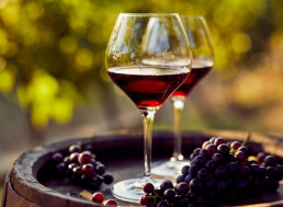 In Vino Veritas: Find out What Characteristics Make Award-Winning Wines