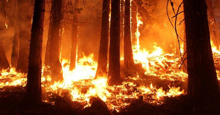 history of Australian bushfires