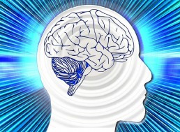 Researchers Develop A Device That Translates Brain Signals into Speech