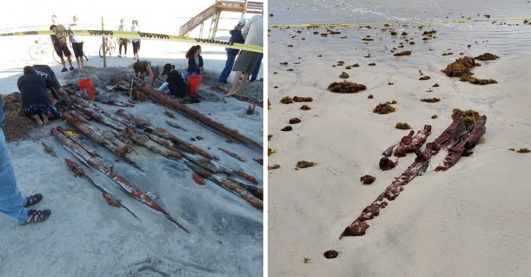 200-Year-Old Shipwreck Unearthed by Erosion on Florida Beach
