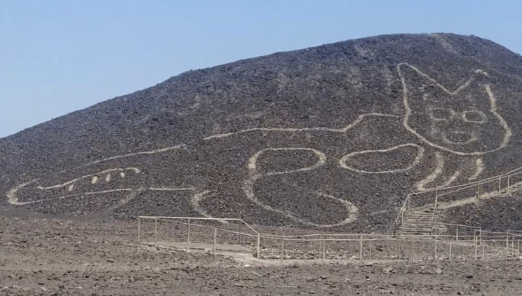 """Say """"Meow"""", A Figure of a Cat Joins the Famous Nazca Lines"""