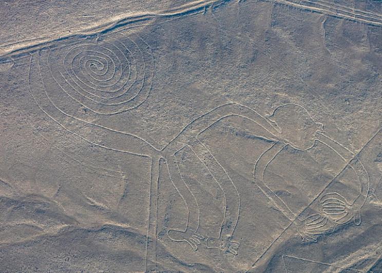 Nazca monkey