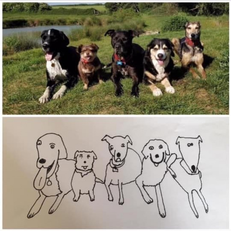 Man Raises Thousands for Charity by Drawing 'Crappy' Pet Portraits