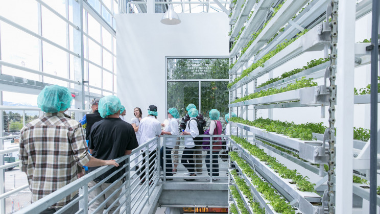 New Projects Combine Vertical Farming With Affordable Housing