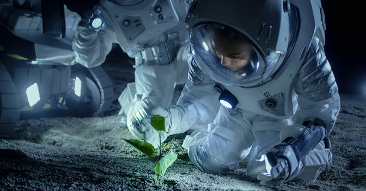 New NASA Challenge Seeks Novel Food System Technologies