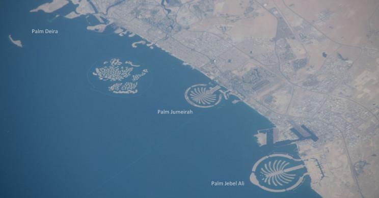 7+ Curious Facts About Dubai's Palm Islands