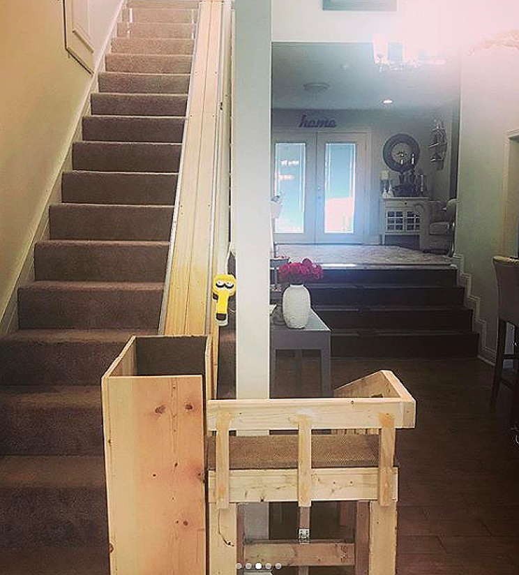Dog Owner Builds Stairlift to Help Her Elderly Pugs Climb the Stairs Easier