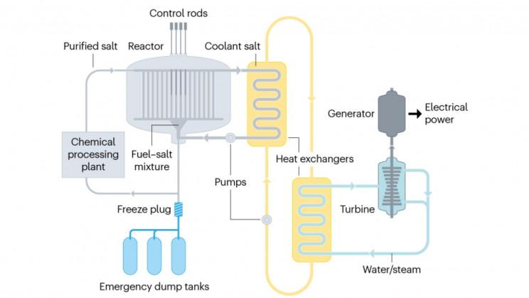 Nuclear Salt Reactor