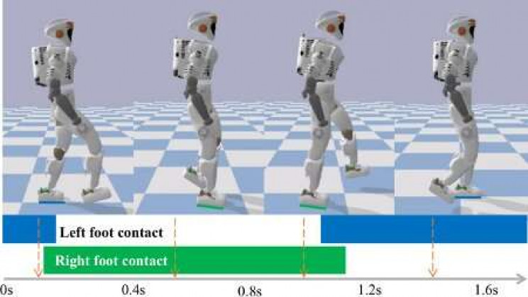 Robots Learn Different Locomotion Behaviors Using Human Demonstrations
