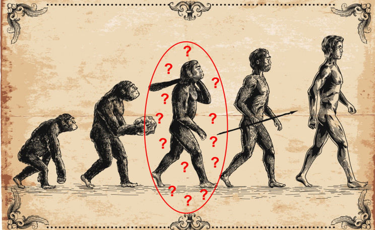 No, Humans Didn't Evolve From the Ancestors of Living Apes