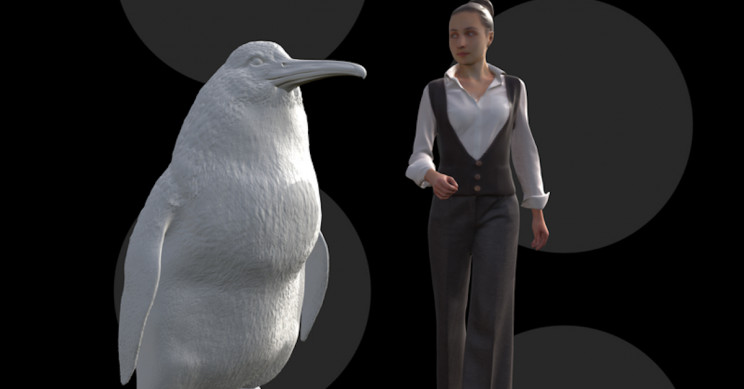 Impressive Fossil of Human-Sized Penguin Discovered in New Zealand