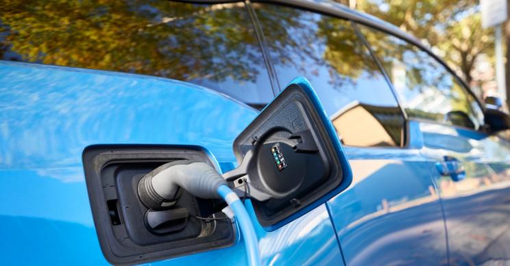 BMW Donates 100 New EV Charging Stations for U S  National Parks