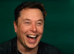 Tesla Will Develop a Quiet Leaf Blower Says Musk