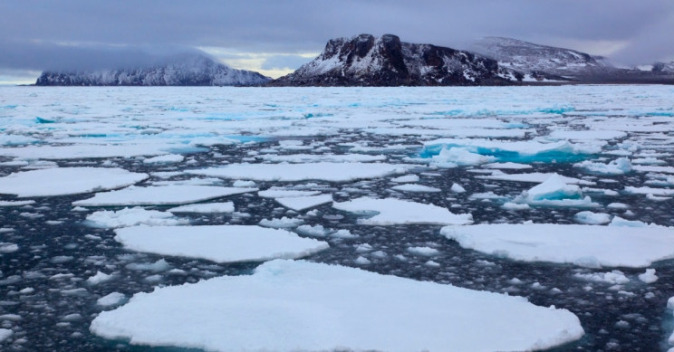Arctic Ice Coverage Tied For Second Lowest Level Ever Recorded