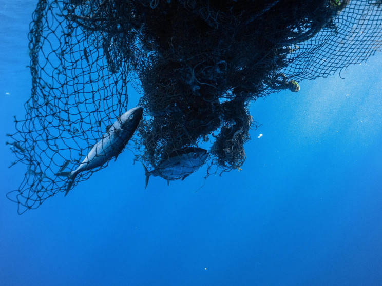 Ocean Voyages Sets Record With Largest Haul of Plastic Removed in History