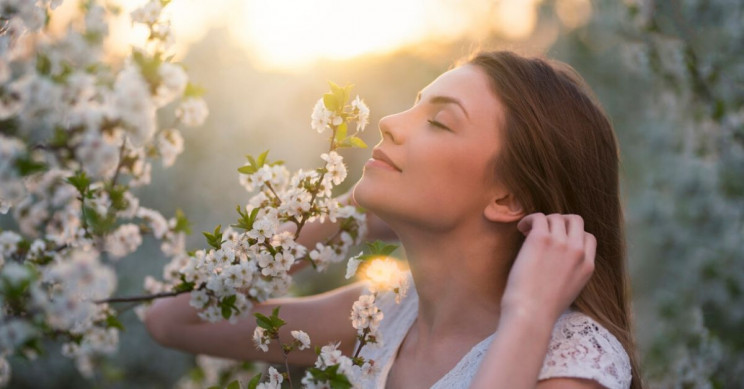 Researchers Discovered Two Women Can Smell without the Olfactory Bulb
