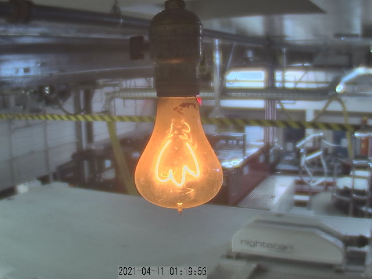 world's longest running bulb