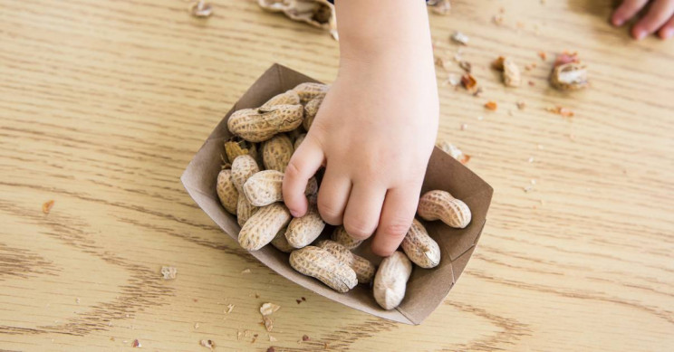 World's First Drug for Treatment of Peanut Allergy in Children Approved by the FDA