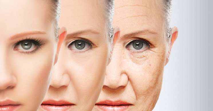 New Anti-Aging Clinical Trial Charges $1 Million to Participate